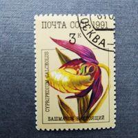 Марка СССР 1991 год.  Орхидеи