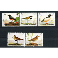Фуджейра - 1972 - Птицы - [Mi. 1356-1360] - полная серия - 5 марок. MNH.