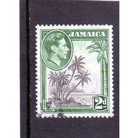 Ямайка. Ми-123. Кокосовые пальмы в бухте Columbus. 1938.
