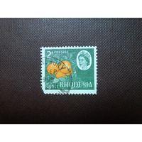 Родезия 1966 г.Апельсины.