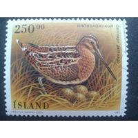 Исландия 1995 птица