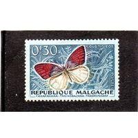 Мадагаскар. Mi:MG 445. Бабочка - Фиолетовый наконечник (Colotis zoe). 1960.
