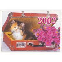 Календарик 2002 (54)