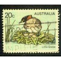 Австралия 1978 Mi# 655 (AU018) гаш.