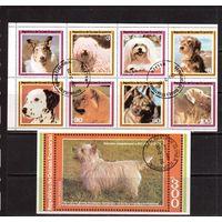 Гвинея-Экв, 8 м + 1 б , гаш., Фауна(Собаки)
