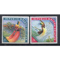 Птицы Малуку Селатан (самопровозглашенная территория Индонезии) 1952 год 2 марки