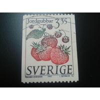 Швеция 1995 клубника