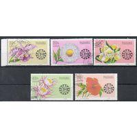 Цветы Панама 1966 год 5 марок