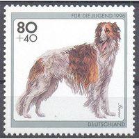 Германия 1996 фауна собака