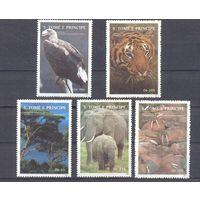 Африка фауна экология природа