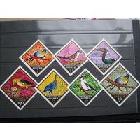 Марки - фауна, Гвинея, птицы, ромб