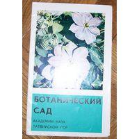Ботанический сад Академии наук Латвийской ССР - буклет со схемой территории ботанического сада. 1983 г.