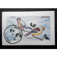 Шотландия. о-ва Стаффа 1972 г. Птицы. Фауна. Блок #0157-Ф1