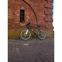 Aist Special Edition к чемпионату мира по велоспорту 2013г.