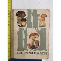 За грибами.Определитель грибов В.Тойбиса 1974г.