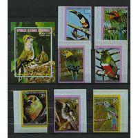 Экваториальная Гвинея 1974г. птицы. 7м. 1 блок, без зубцов