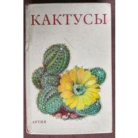 """Книга """"Кактусы"""""""