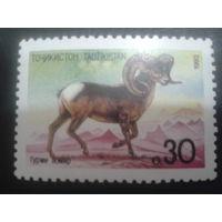 Таджикистан 1992 горный баран
