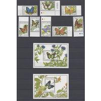 Фауна. Бабочки. Сьерра Леоне. 1989. 8 марок и 2 блока (полный комплект). Michel N 1279-1286, бл109-110 (60,0 е).