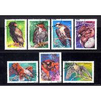 Танзания 1994. Фауна. Птицы. Полная серия