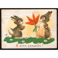 1960 С днем рождения ! зайцы с морковкой; худ. Бедарев