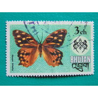 Бутан. Бабочки.