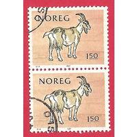 Козел в сцепке 1981 г. Норвегия