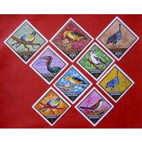Гвинея. Птицы. ( 9 марок ) 1971 года.