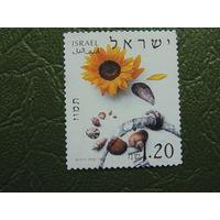 Израиль. Флора