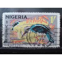 Нигерия 1971 Птицы
