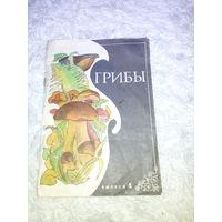 """Журнал-буклет   """"Грибы""""  СССР"""