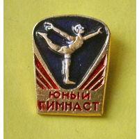 Юный гимнаст. 188.