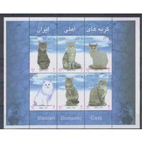 [1578] Иран 2004. Фауна.Кошки. БЛОК.