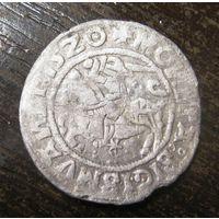 Полугрош 1520 г.