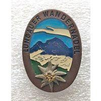 Эдельвейс - туристический знак. Горная вершина Lungauer Kalkspitze 2471 метров над уровнем моря. Австрия