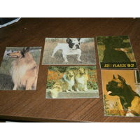 Календарики с собаками, 1992, 1993 год, 5 штук