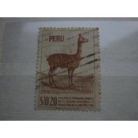 Марка - Перу - фауна, парнокопытные, лама