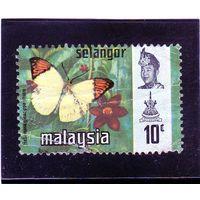 Малайзия. Селангор. Ми-109.Бабочки. Большой оранжевый тип.1971.