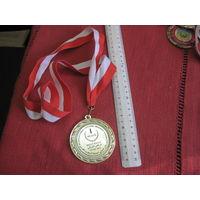Медаль за 1 место в танце живота на международном фестивале Тунис 2012.