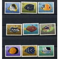 Польша - 1967 - Рыбки - [Mi. 1748-1756] - полная серия - 9 марок. MNH.