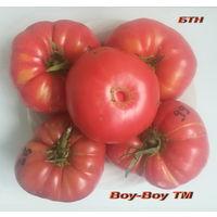Семена томата Boy-Boy TM