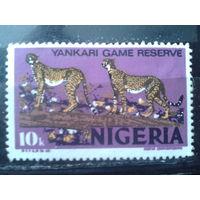 Нигерия 1973 Стандарт 10 кобо гепарды*