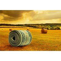 Курсовая - Организация коммерческой деятельности по обеспечению сырьем и сбыту продукции на предприятии АПК - Коммерческая деятельность АПК