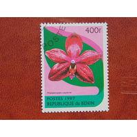 Бенин  1997г. Флора.