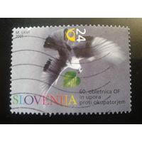 Словения 2001 голубь
