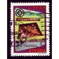 1 марка 1981 год Эфиопия 1085