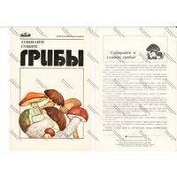 Буклет главкоопторгрекламы - собирайте ,сушите грибы,1976 г.