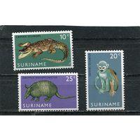 Суринам. Открытие зоопарка в Парамарибо
