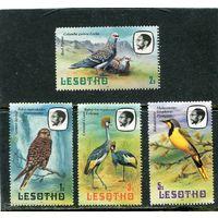 Лесото. Птицы. Дата 1982