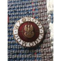 Нагрудный знак(Отличный командир) Польша